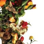 foodscrap-thumbnail-blog-4-2016